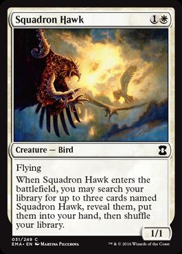 squadronhawk