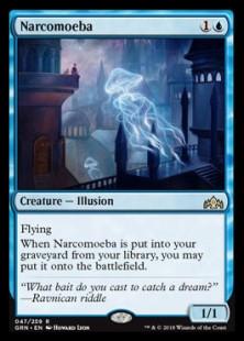 imir-Narcomoeba